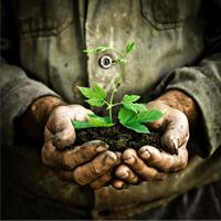 L'homme et la terre : ce que nous enseignent les paysans