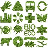 Ecologie plénière : des convergences inattendues