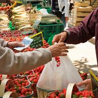 L'AMAP, une solution locale & solidaire pour bien manger : le point de vue du consommateur