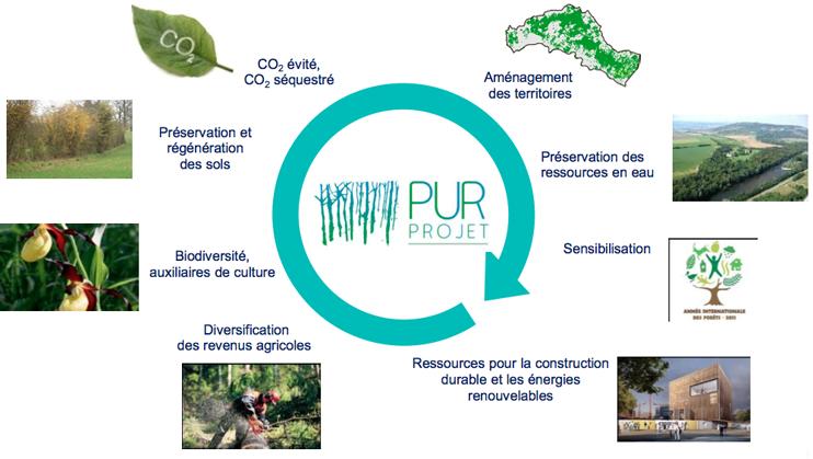 Pur Projet : investir dans la préservation de l'environnement