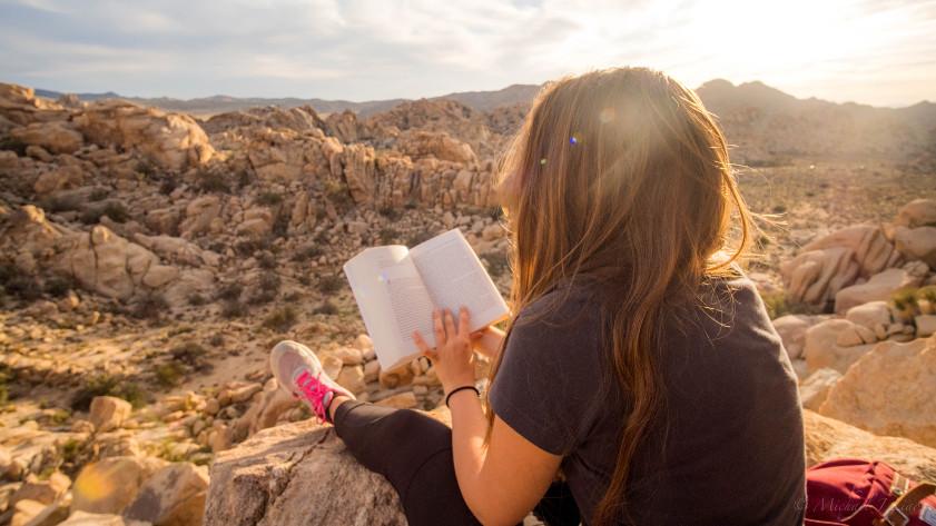 Qu'est-ce que tu lis pour les vacances ? #CHRONIQUEDUMYCELIUM