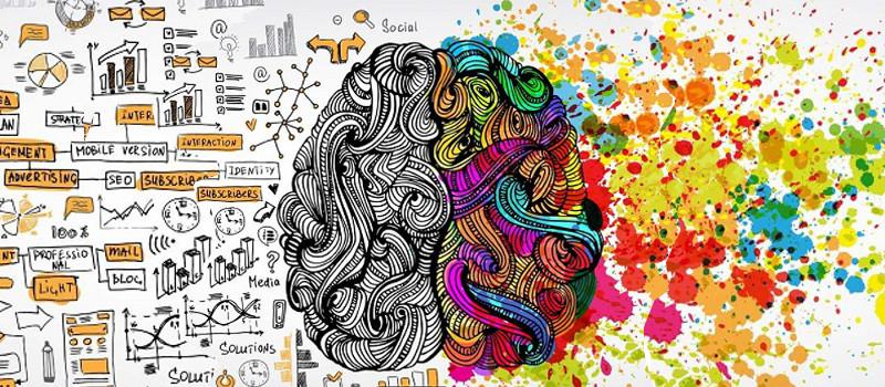 Le cerveau divisé