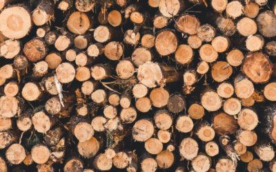 montasdebois.fr : donner ou récupérer du bois gratuitement