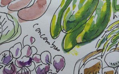 Rencontrer, dessiner, s'émerveiller des jardiniers dans la ville