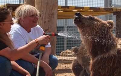La Tanière : premier zoo-refuge en France
